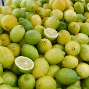 50_limones