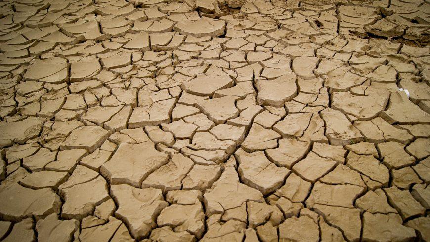 """Charla: """"Cambio climático: ¿Qué hacer?"""""""