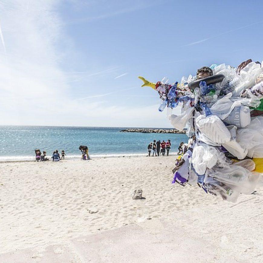 ¿Adiós a las bolsas de plástico?