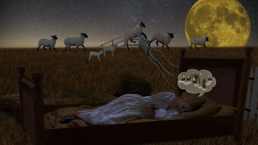 ¿Insomnio? Usa flores de Bach para dormir (I)
